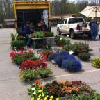 Clarence Hollow Farmers' Market Flower Days begins this Saturday