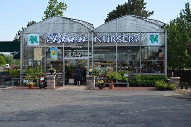 Bison Nursery 017