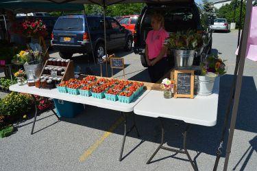 Farmers Market LeRoy 008