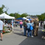 Scenes from this morning's full opening of Clarence Hollow Farmers' Market