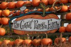 Splendid Fall Weather Brings Big Crowds to Pumpkin Farm